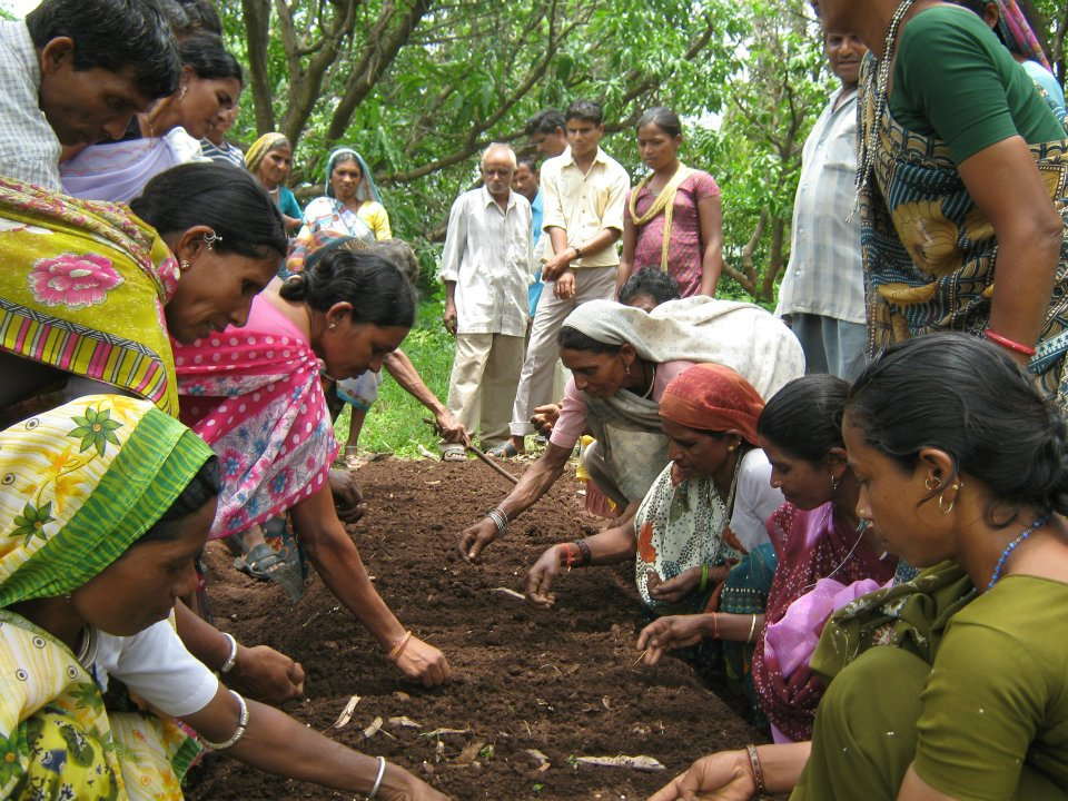 Growing a sustainable community through herbal medicine: The story of Aadi Aushadhi