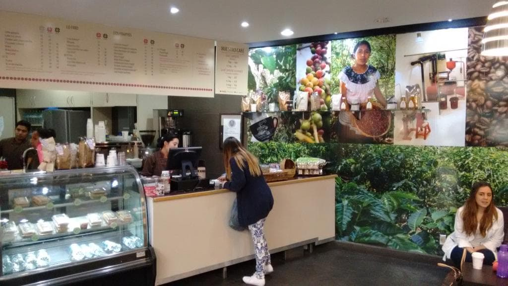 Doing Coffee Differently, Chiapas, Mexico