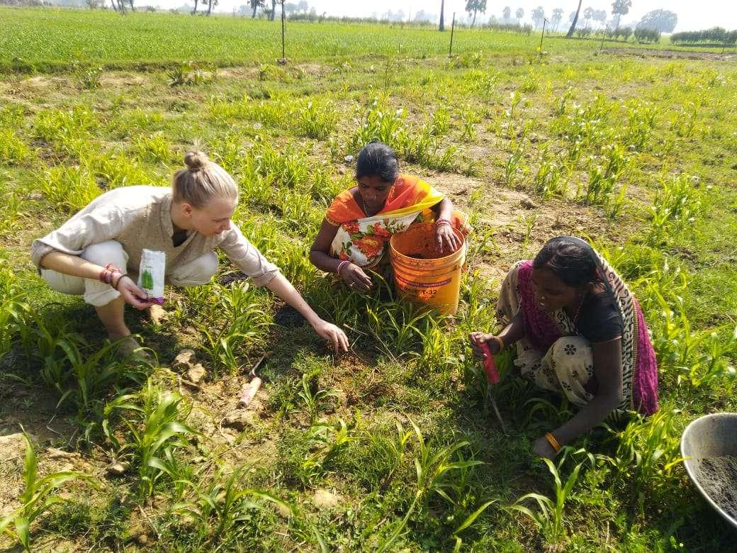 Khetee, Bihar, India